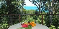 Accommodation Daintree Australia
