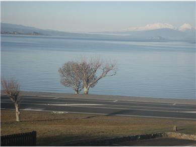 Lake Taupo accommodation