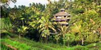 Accommodation Ubud Indonesia