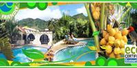 Accommodation Anse Jonchee Mauritius