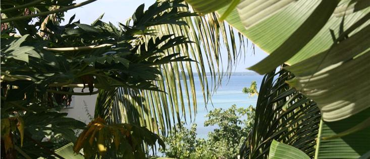 OceanView Vanuatu 1