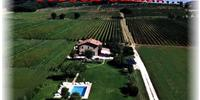 Accommodation Torgiano Italy